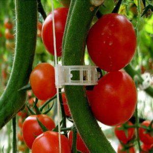 Щипки за привързване на домати