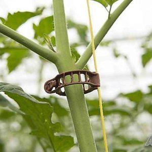 Щипки клипси за домат
